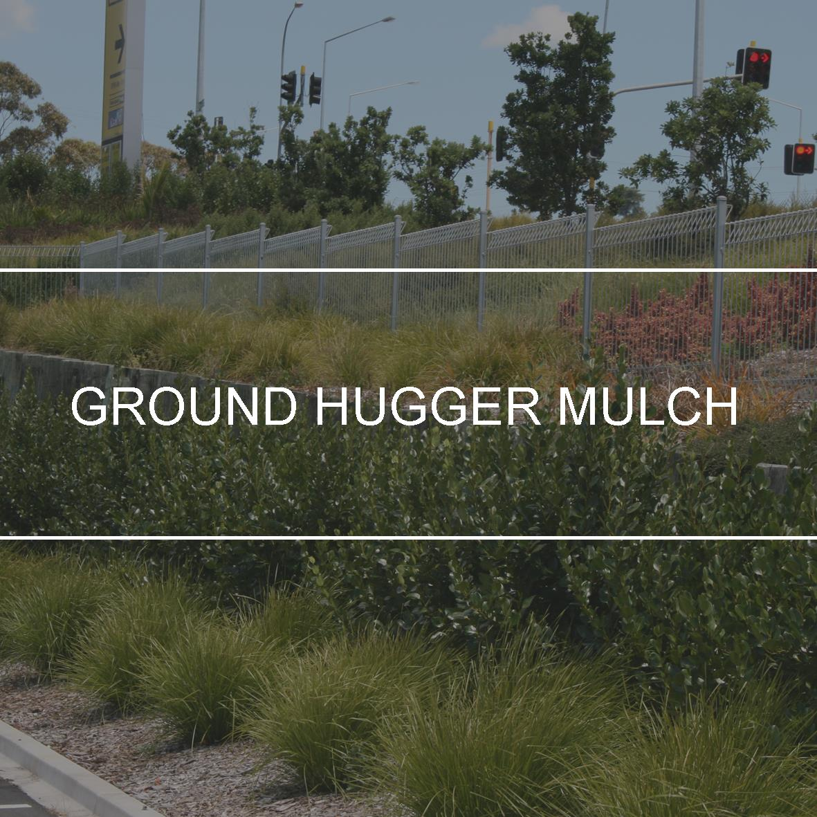 product_header_groundhugger