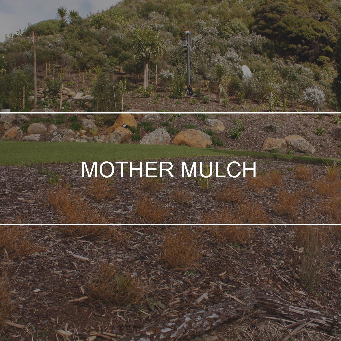 product_header_mother